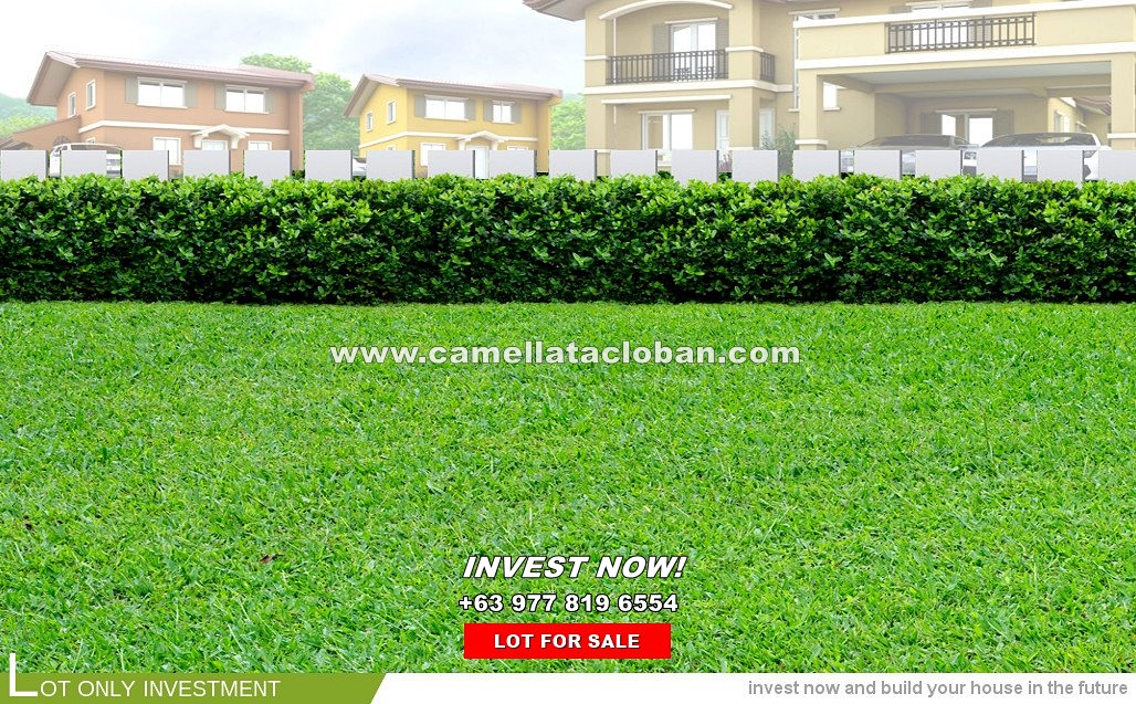 Lot House for Sale in Tacloban